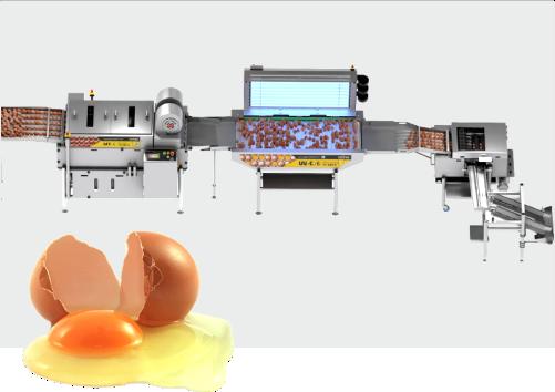 Linie pentru spalat, dezinfectat, spart ou si separat galbenus de albus